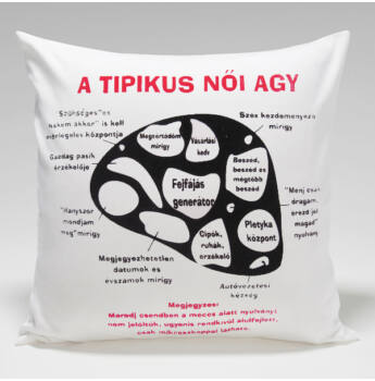 Párna/ A tipikus női agy